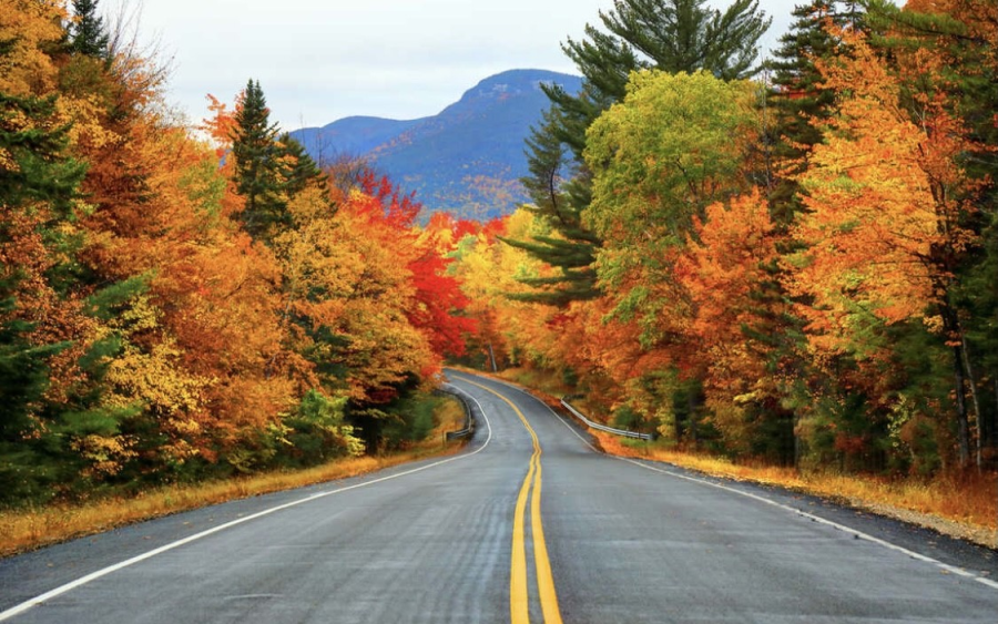 Student's Favorite Things To Do in the Fall